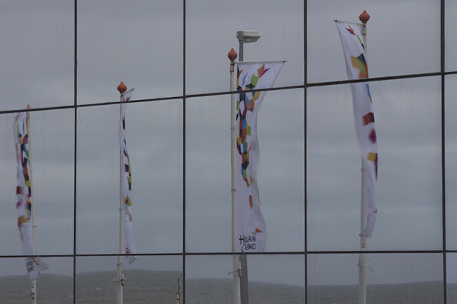 reflected flags