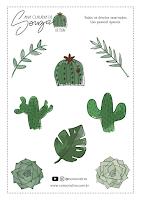 Adesivos Cactus e Suculentas