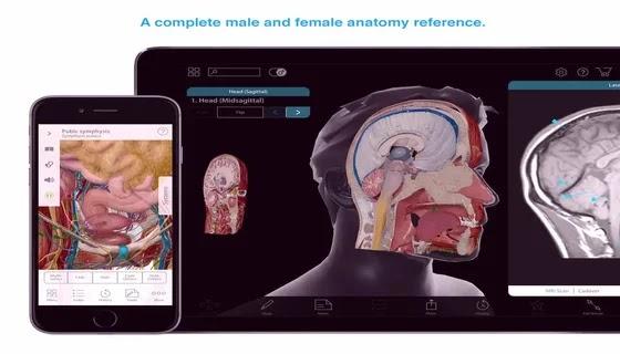 Human Anatomy Atlas 2021 مدفوع | تحميل برنامج Human Anatomy Atlas 2021.2.27 مدفوع كامل مجاناً