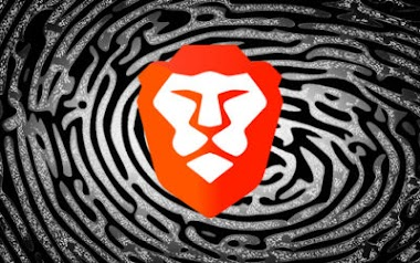 Brave, Fingerprinting, and Privacy Budgets