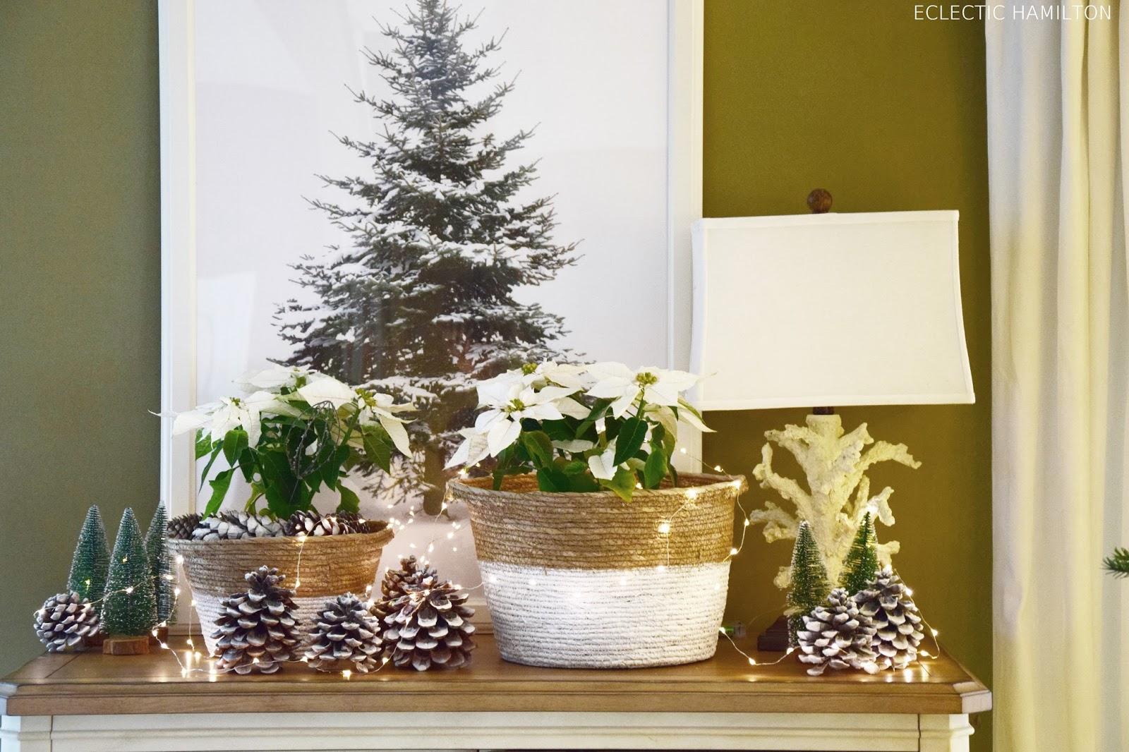 Weihnachtsdeko mit Weihnachtsstern, Pinienzapfen, Lichterkette auf Sideboard, Fernsterbank, Konsole oder Tisch. Deko Dekoration Dekoidee