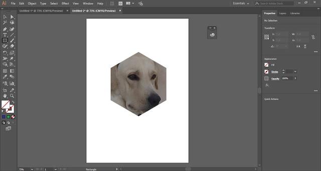 Clipping Mask in Adobe Illustrator