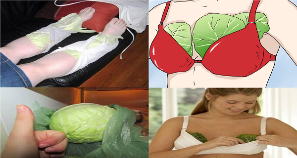 Put Cabbage Leaves Onto Your Chest and Legs Before You go to Sleep if you Experience Frequent Headaches-the Next Morning You Will Feel Healthier Than Ever!