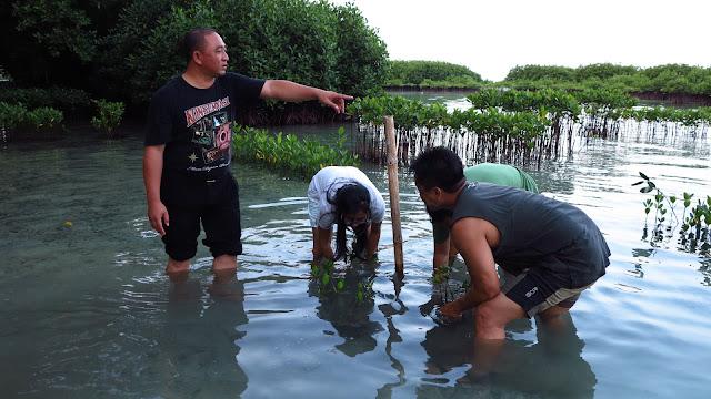 Eco Diver Journalists: Inovasi di Sektor Kelautan Sangat Diperlukan Untuk Laut Yang Berkelanjutan