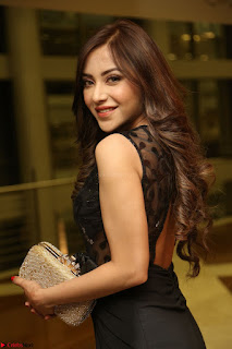 Angela Krislinzki in Transparent Black Gown at Rogue Movie Teaser Launch 1st March 2017 082.JPG