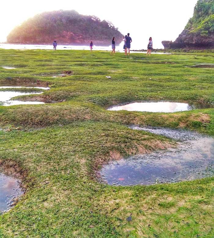 Fasilitas Teluk Asmara Beach Malang