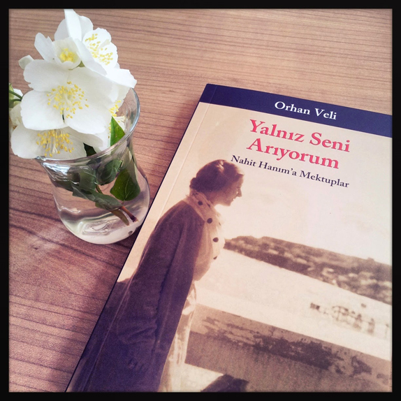 Yalnız Seni Arıyorum - Tavsiye Kitap