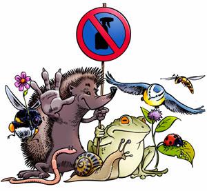 شركة رش مبيدات لمكافحة الحشرات بالدمام