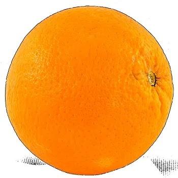 संत्रा, Orange fruits name in Marathi
