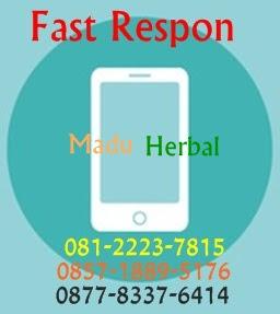 Fast respon madu herbal