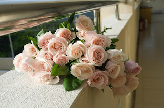 """5 Scintillating Flowers That Say """"I Love You"""""""