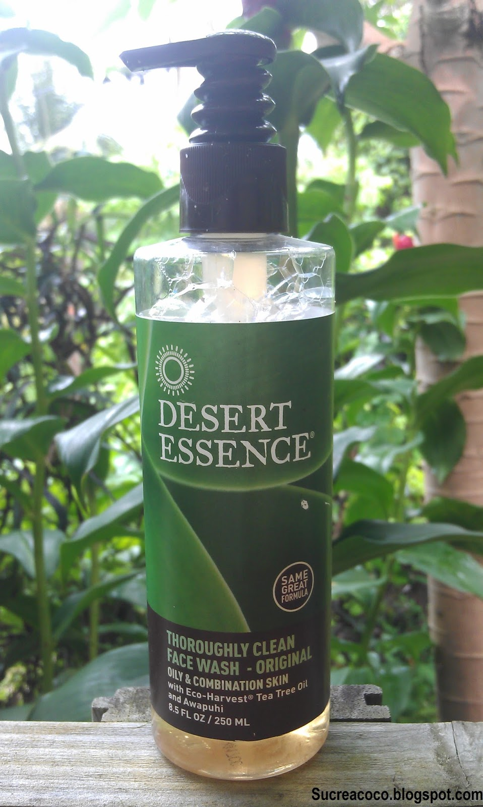 sucre coco gel nettoyant pour peaux mixes grasses desert essence. Black Bedroom Furniture Sets. Home Design Ideas
