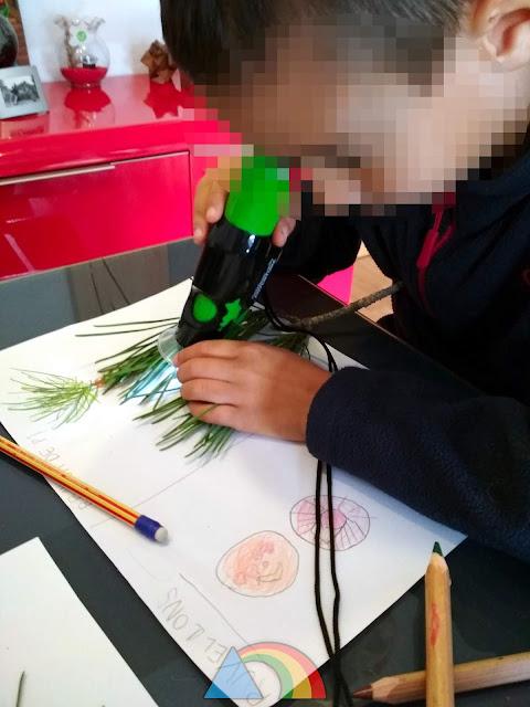Observando hojas de pino con microscopio de mano