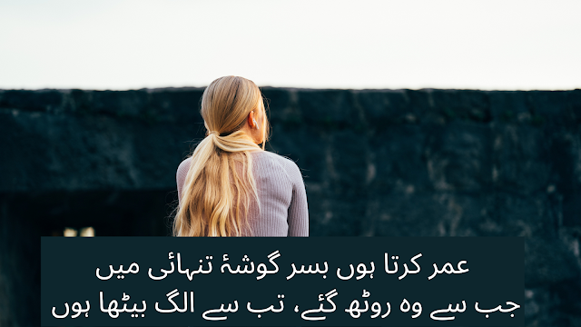 urdu shayri - best poetry in urdu - download 2 line poetry for fb and whatsapp status - sad shayri romantic shayari by pir naseer u din naseer