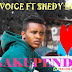 AUDIO | P Voice Ft Shedy Boy - NAKUPENDA | (Download Mp3)