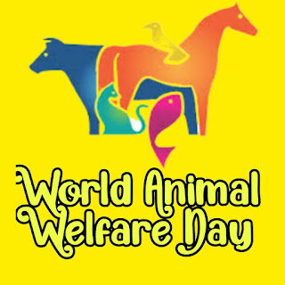 Best World Animal Day Pictures 2021