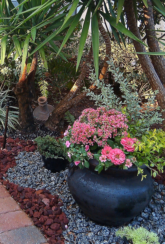 FOCAL POINT STYLING: RENEWED CONTAINER GARDEN FOR SPRING