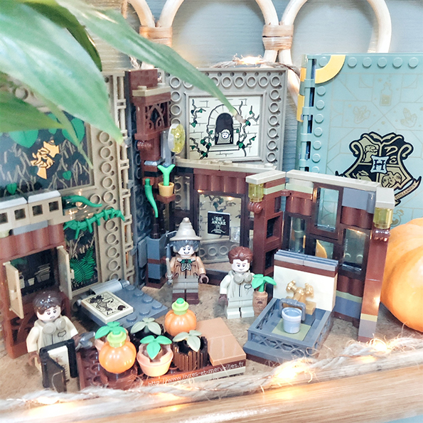 LEGO® Harry Potter™ - 76384 Poudlard - Le cours de botanique
