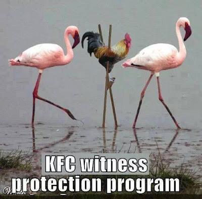 Witness protection program..