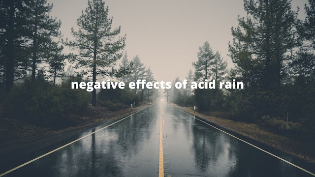 negative effects of acid rain