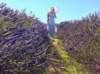 http://pridenstyle.blogspot.co.uk/2015/08/walking-through-lavender-farm.html