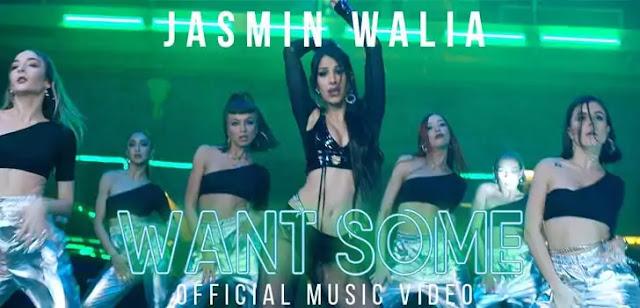 WANT SOME LYRICS – JASMIN WALIA | NewLyricsMedia.com