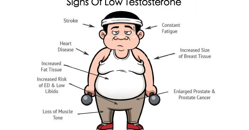 Are Low Testosterone Levels Dragging You Down ?  All. Clinical Laboratory Technician Salary. Gps Tracking For Equipment Hair Salon System. What Does Uninsured Motorist Insurance Cover. California Labor Federation Sell Time Share. All 3 Credit Scores One Time Fee. Wells Fargo Student Loan Fax Number. One Beacon Insurance Careers. Email Marketing Wordpress Pc Backup Solutions