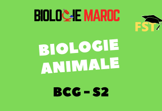 Biologie Animale BCG S2 : Cours+TD+Examens PDF
