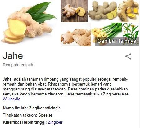 Rasanya yang pedas dan menghangatkan menciptakan Jahe menjadi tumbuhan yang mempunyai rasa khas Jahe, Tanaman menghangatkan Ini Rupanya Mempunyai Banyak Fakta sehat! Cari Tahu disini
