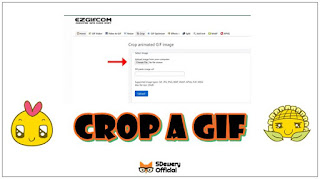 How to Crop a Gif