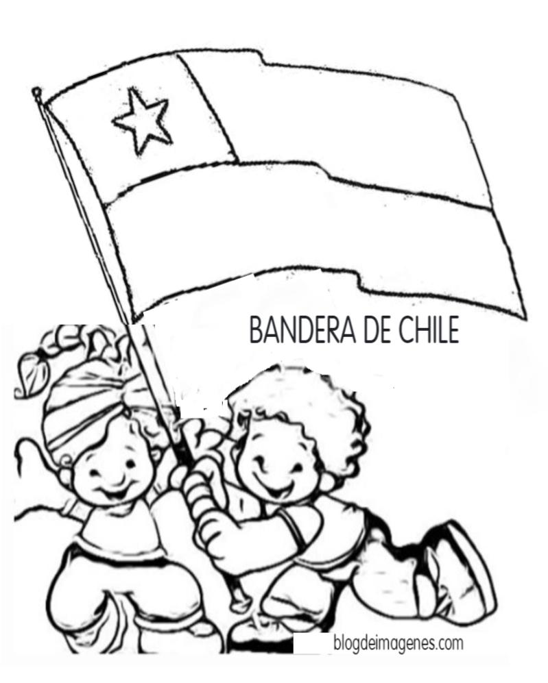 Dibujo Para Colorear Copihue Y Símbolos De Chile Blog De