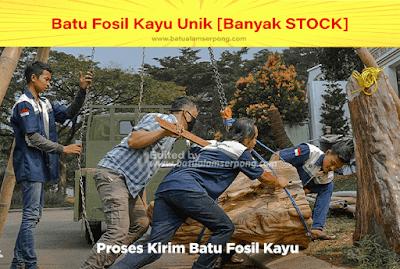 proses pengiriman batu fosil kayuukuran besar