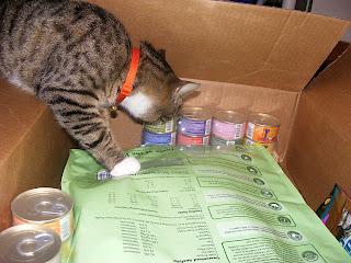 Oliver investigating