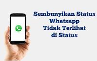 Bagaimana Cara Melihat Status Whatsapp Tanpa Ketahuan dari Saya?