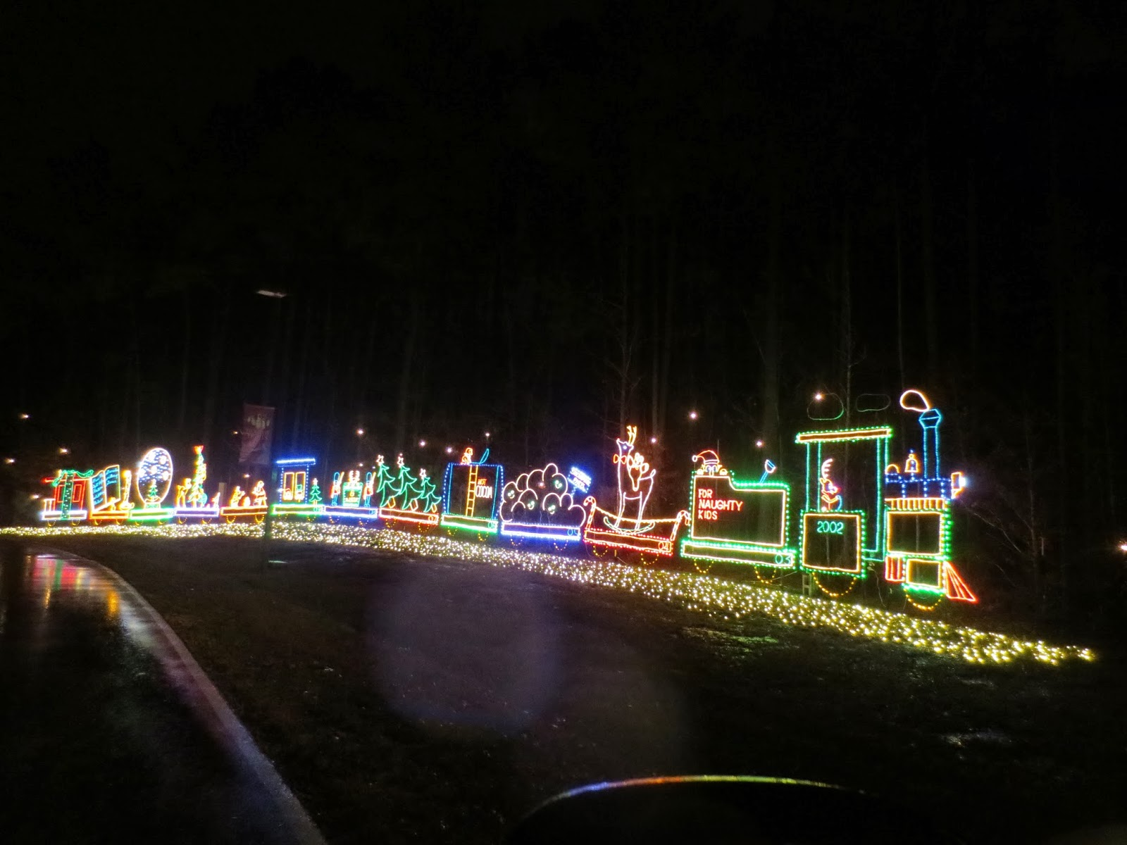 Saluda Shoals Christmas Lights