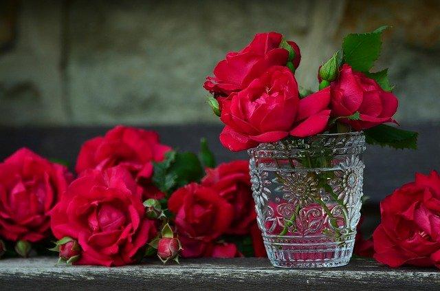 Gambar bunga mawar mereh dalam gelas