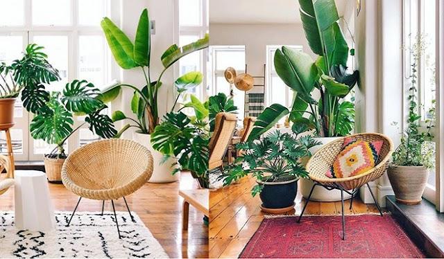 Làm mới ngôi nhà chuẩn homestay với kinh phí chưa đến 2 triệu đồng