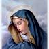 THỨ 5 : ĐỨC MẸ SẦU BI, BỔN MẠNG TỈNH DÒNG ĐA MINH VIỆT NAM