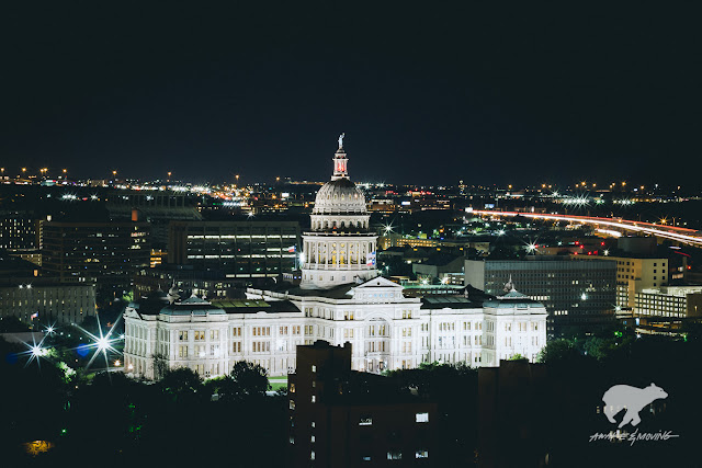 Elevated view of the Texas State Capitol.