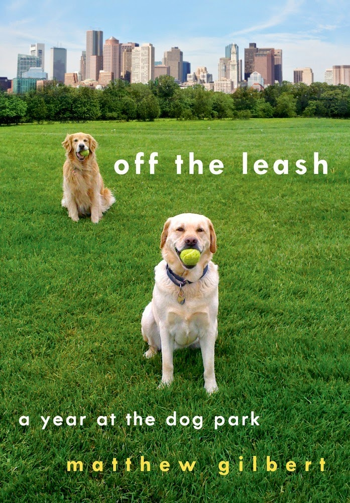 Campaign for the American Reader: Sixteen of the best books for dog