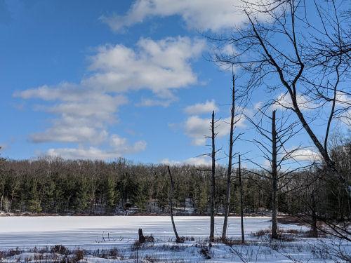 McCarthy Lake