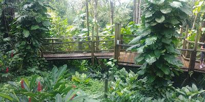Zoo de Guadeloupe