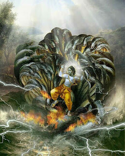 Lord Krishna On Sheshnag Photo, Lord Krishna On Sheshnaag, Lord Krishna ride on Sheshnag