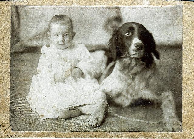 John Chester Kephart 1914-1915