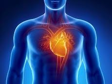 Cara Alami Mengobati Lemah Jantung