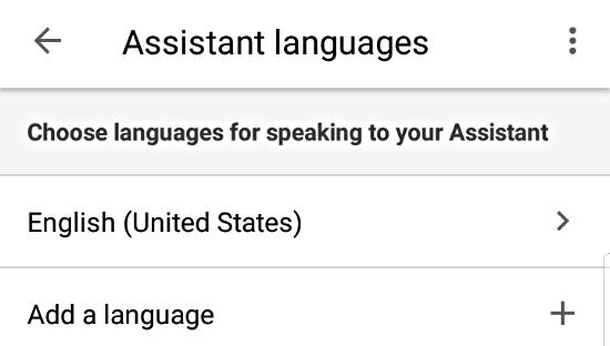Change Google Assistant language