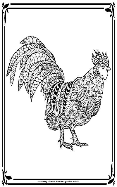 gambar mewarnai ayam untuk dewasa gratis