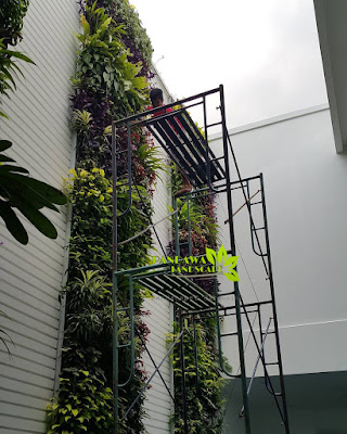 jasa vertical garden kota semarang