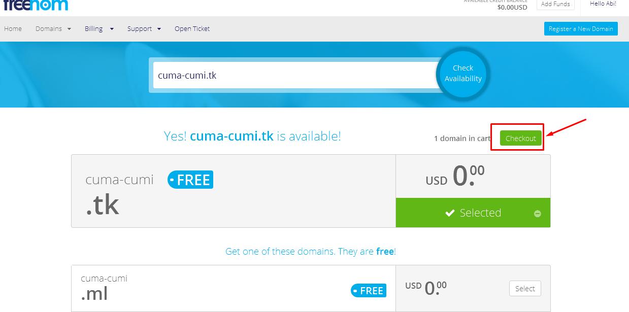 Setelah Pilih Domain Lanjut Klik Checkout