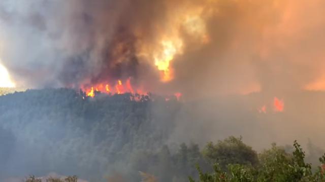 Βίντεο που κόβει την ανάσα από την φωτιά στην Εύβοια